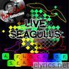 Live Seagulls