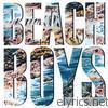 Beach Boys It's Just A Matter Of Time lyrics