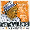 Big Joe Williams Revisited