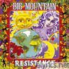 Big Mountain - Resistance