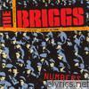 Briggs - Numbers