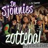 Zottebal (feat. DJ Daroon) - Single