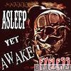 Asleep yet Awake