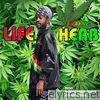 Life Herb (feat. Satnam Singh Chatha & Bhingy Riddim) - Single