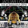 Live At Sasquatch 2010 (Live Nation Studios)