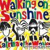 Walking on Sunshine (2004 Version) - Single