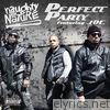 Perfect Party (feat. Joe) - Single