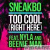 Too Cool (Right Here) [feat. Nyla & Beenie Man] - Single