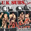 Uk Subs - Violent State