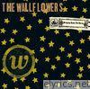 Wallflowers - Bringing Down the Horse (with PDF Booklet)