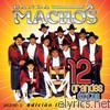 Banda Machos: 12 Grandes Exitos, Vol. 2