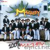 100% Maguey