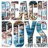 Beach Boys - The Beach Boys