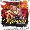 Dil De Kareeb - Single