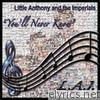 You'll Never Know (Re-Recorded Versions)