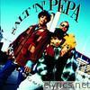 Salt-n-pepa - Very Necessary