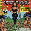 Screeching Weasel - Bark Like a Dog